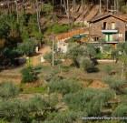 Ein Ferienhaus in Portugal, ein Traum wird war.
